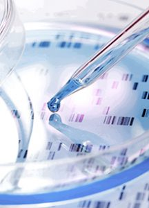 NIA repository offers cell/DNA samples for research on the mechanisms of aging
